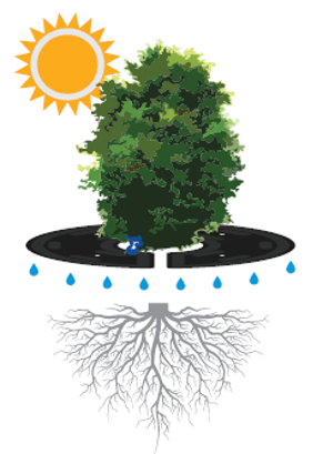 RootWise™ directs water directly to the root zone.